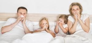 Alergias de verano