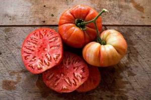 Tomates Naranjas Lola