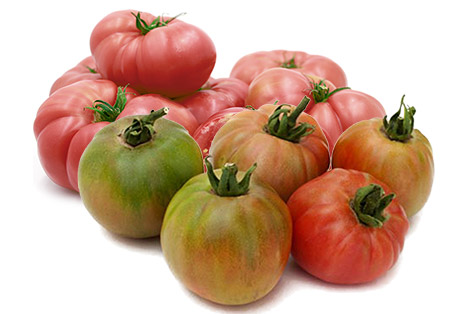 Tomate Rosa y Tomate Valenciano
